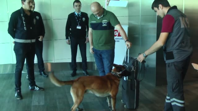 Austrian passengers who are departing to Vienna from Istanbul are subjected to a search by a police dog at the Ataturk Airport in Istanbul Turkey on...