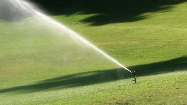 Automatic Lawn Sprinkler Early Morning