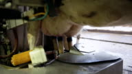 Automatic milking system in action milking a cow
