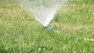 Automatic Sprinkler, HD Video