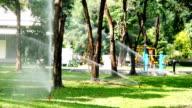 Automatic sprinkler watering
