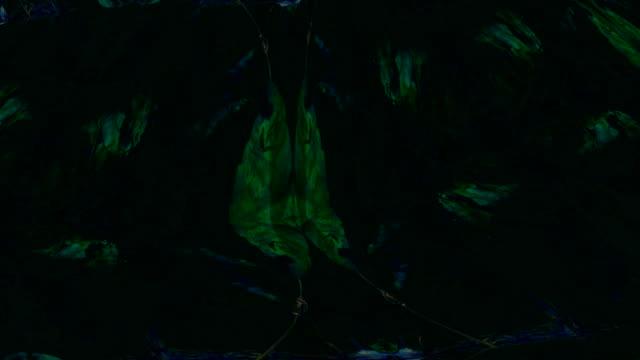 DE andere zet: herfst kleuren, druivenbladeren - cluster, mysterie (lus)