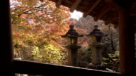 Autumn colours on landscape, stone lanterns in foreground Nara