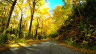 Herbst-Laufwerk in den White Mountains in New Hampshire
