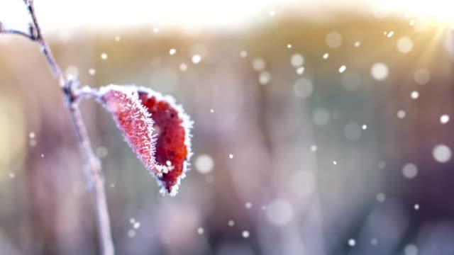 Herbst erste Schnee-Endlos wiederholbar