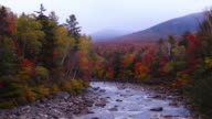 Autunno foglie in White Mountains del New Hampshire