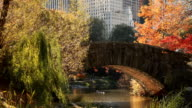 Herbst im Central Park, New York City