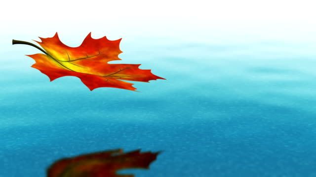 Autumn leaf falling on clear water