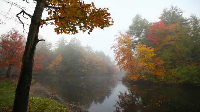 Herbst-Nebel während der peak Herbst Laub der Saison