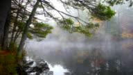 Autunno Nebbia
