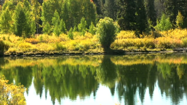 Autumn reflections in Wyoming