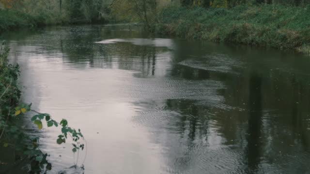 autumn river stream