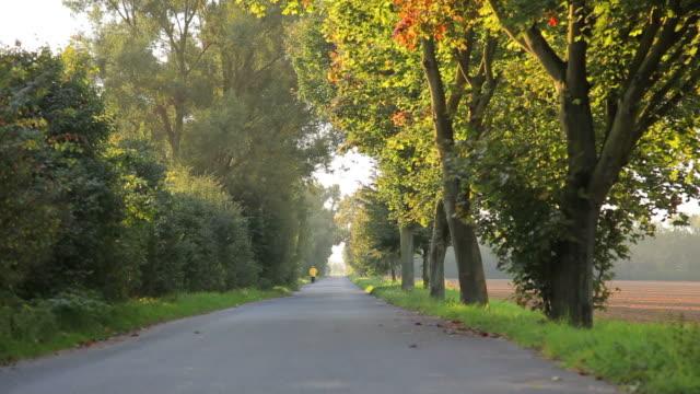 CRANE UP: Autumn Road