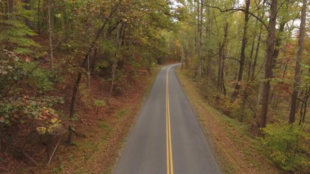 Autumn Roads in November
