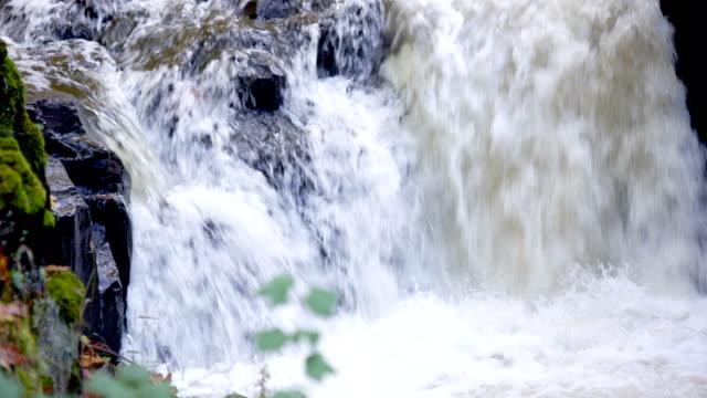 Autunno flusso