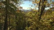 Autumn Vista In Blue Ridge Mountains