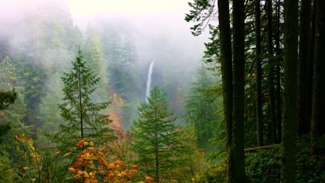 Herfst watervallen
