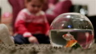 baby and fishes in the fish tank