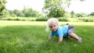 Baby boy crawling in park