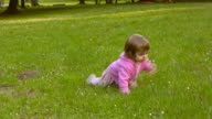 HD: Baby crawling in meadow