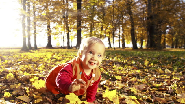 Baby girl crawling over autumn leaves in the park