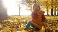 Baby girl playing with autumn leaves