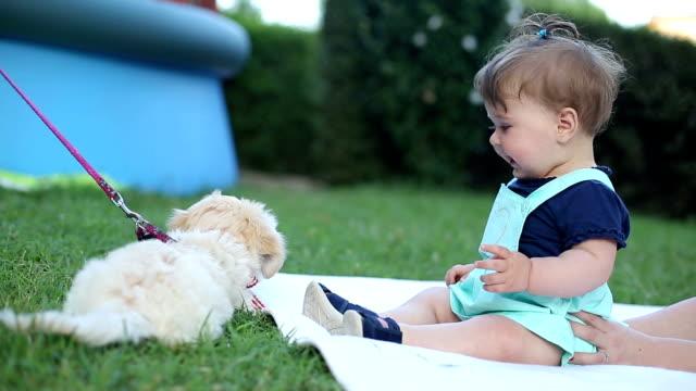 Baby Spaß mit seinen Welpen