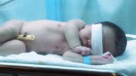 Baby in Brutkasten