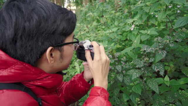 Back view of Asian male photographer taking a photo of wild flower