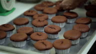 Baking Chocolate Cupcake