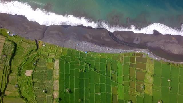 Bali-Reisfeld und Black Beach