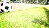 Ball in soccer goal net