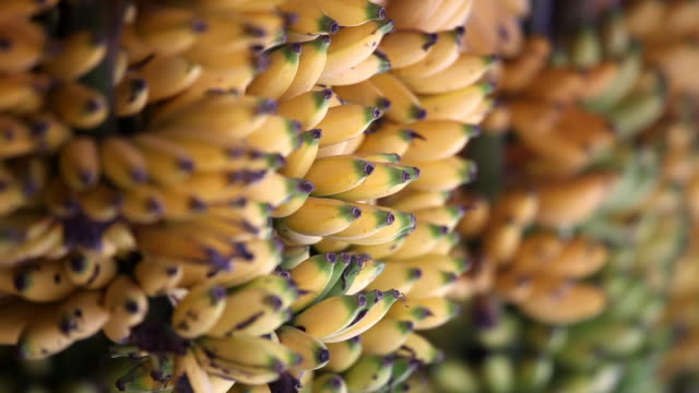HD bananas at market