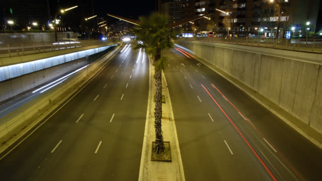 W/S Barcelona night, traffic trails and palm tree, Diagonal area