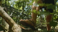 SLO MO Barefoot runner stepping over a log in the forest