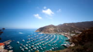 Bay and Town of Avalon on Catalina Island
