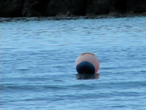 Beach ball in the ocean