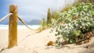Beach Dunes on Majorca