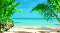 beach on island
