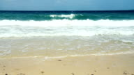 Beach Panning