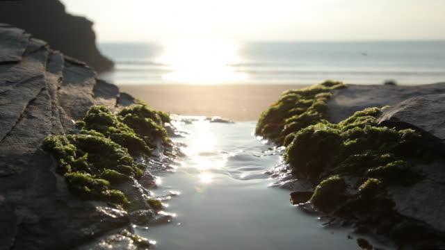 Beach view of rugged coastline and ocean surf, detail