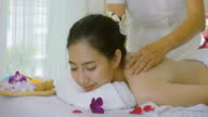 DS : Beautiful Asian Woman Having Exfoliation Treatment in Spa