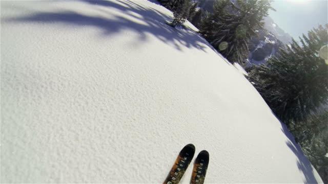Beautiful POV Backcountry skiing through trees