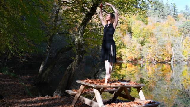 beautiful ballerina dancing on the wooden desk, near the lake in autumn season (Cinemagraph taken)
