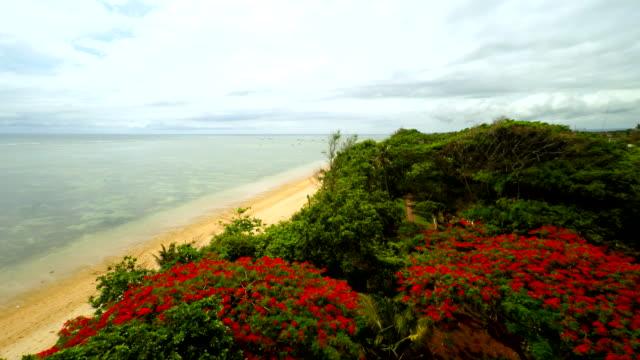 Veduta aerea della splendida spiaggia di Bali