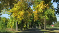 beautiful country road in Autumn