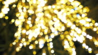 Beautiful defocused decoration lights.