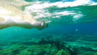 Beautiful footage of girl doing snorkel following group of fishes in the paradise Gili islands during travel vacations in Indonesia.