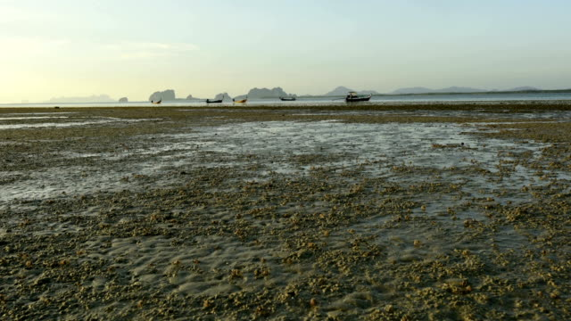 Beautiful landscape of the ocean and beach with crabs while low tide