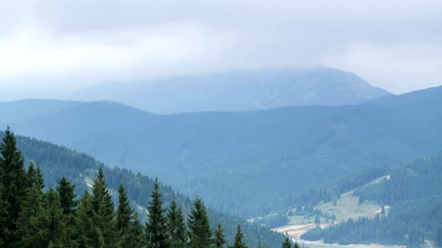 Beautiful landscape with forest and mountains in the Ukrainian Carpathians.